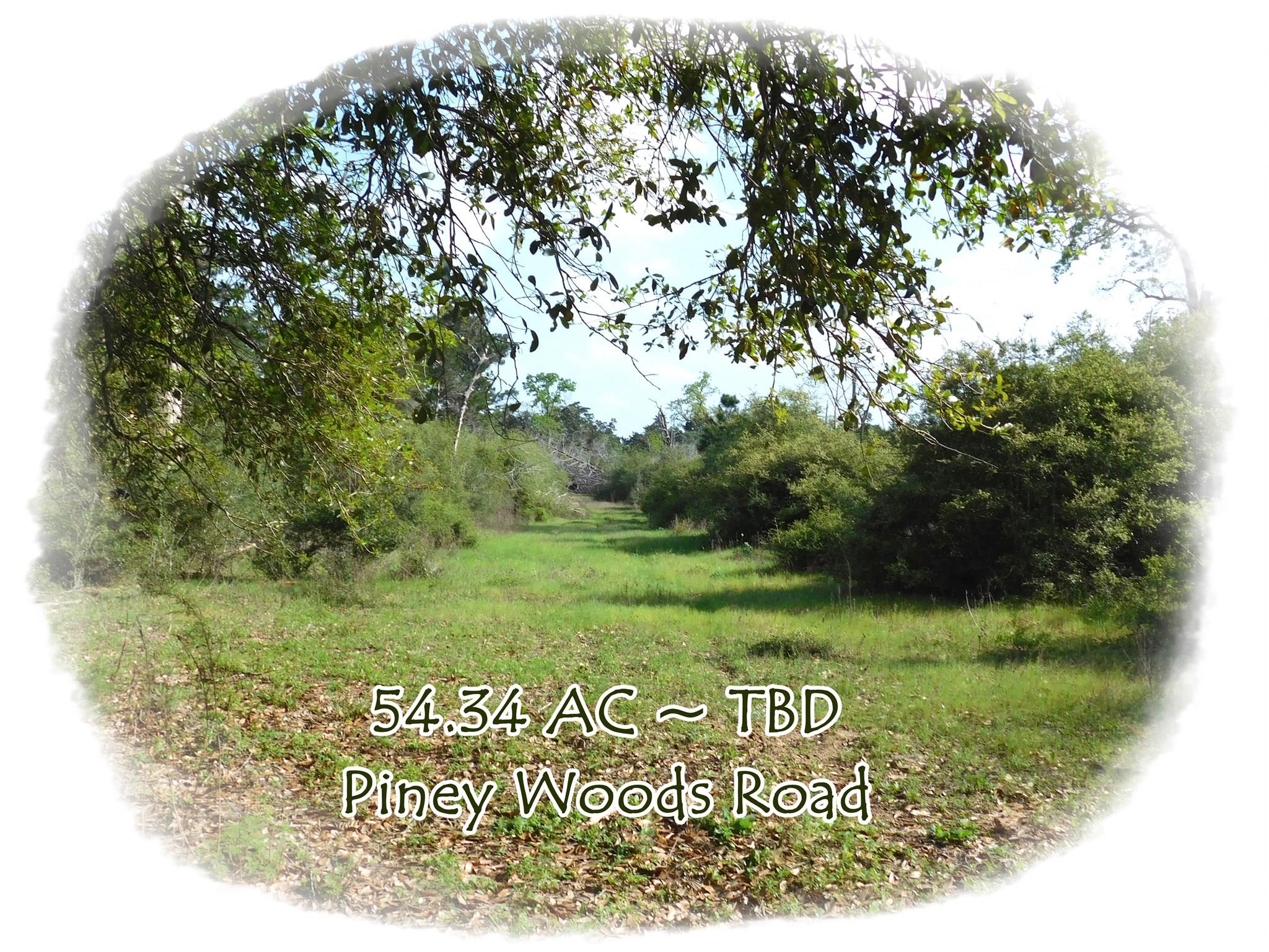TBD Piney Woods Road Property Photo - Alleyton, TX real estate listing