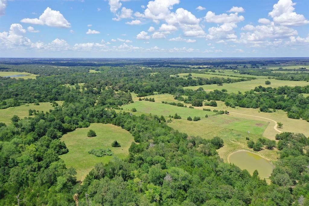 20152 FM 1094 Property Photo - New Ulm, TX real estate listing