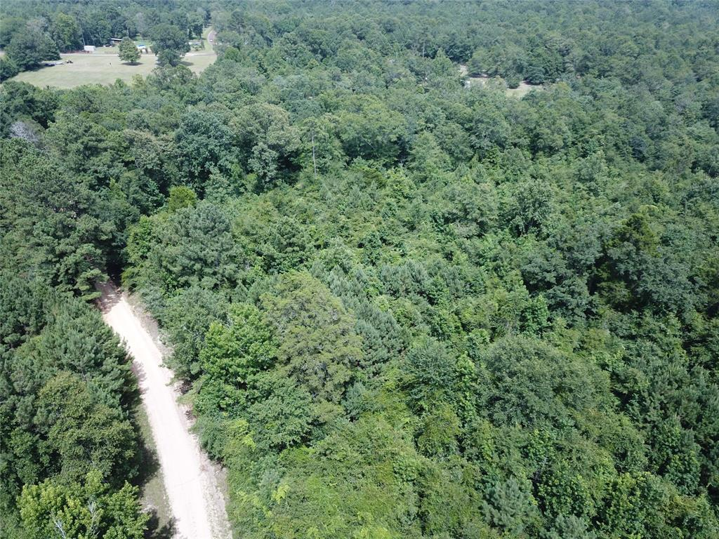 00 County Road 4494 Property Photo - Hillister, TX real estate listing