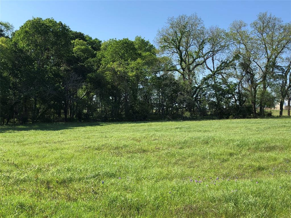9818 Old Chappell Hill Road Property Photo - Chappell Hill, TX real estate listing