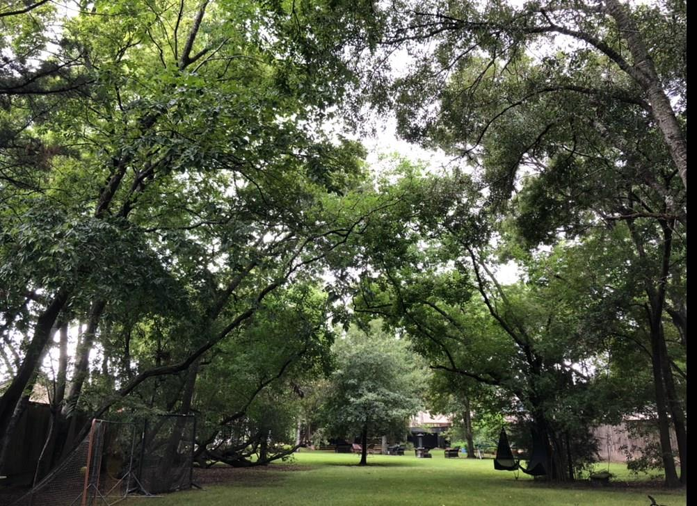 700 Mulberry Lane Property Photo - Bellaire, TX real estate listing