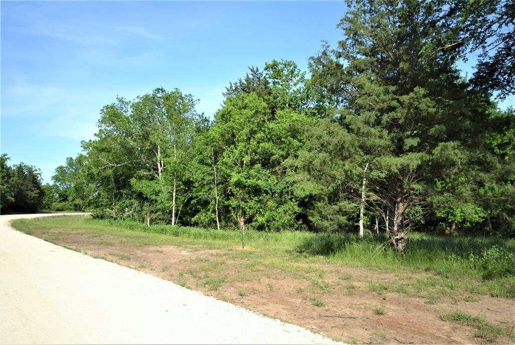 13083 Lot 23 E Old San Antonio Road, Hearne, TX 77859 - Hearne, TX real estate listing