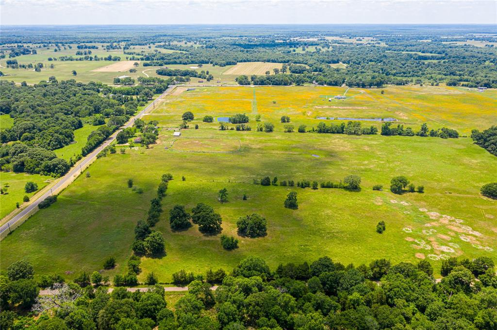 45 Acres FM 320, Palestine, TX 75803 - Palestine, TX real estate listing