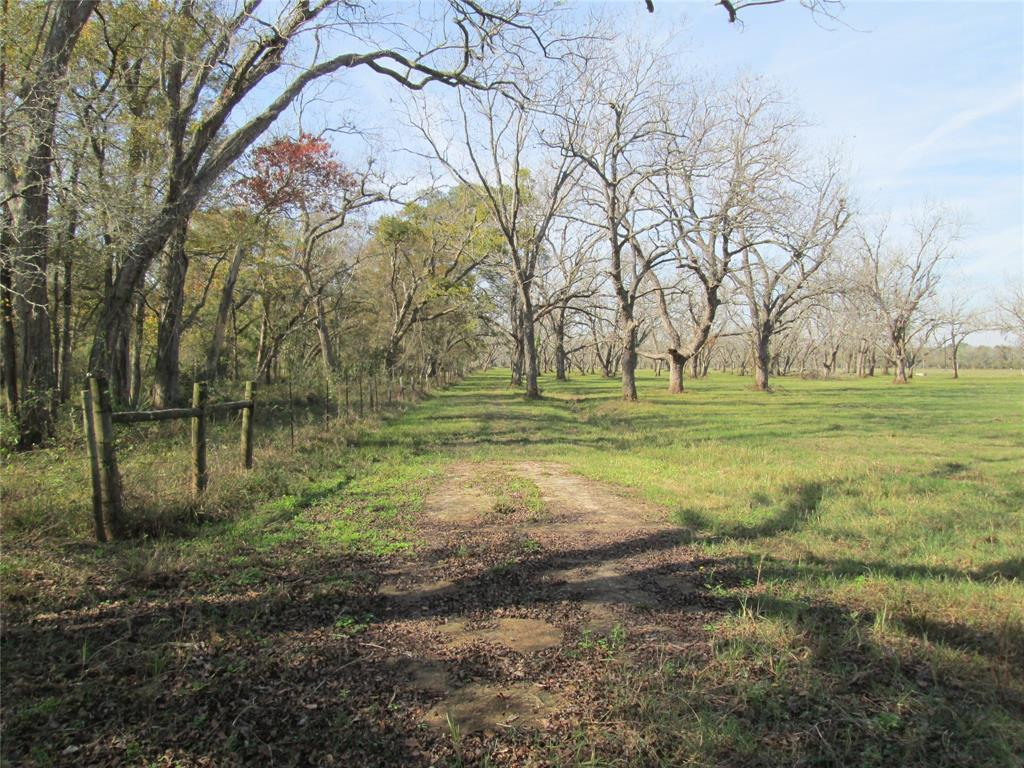 0 Yu Jones Road Property Photo - Thompsons, TX real estate listing