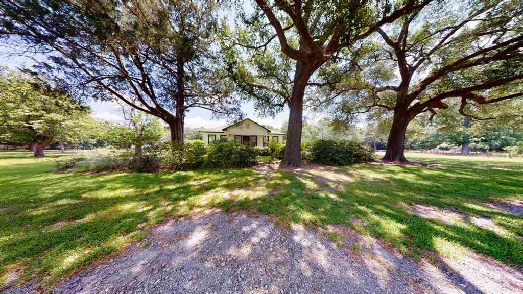 12485 State Highway 87 S Property Photo - Kirbyville, TX real estate listing