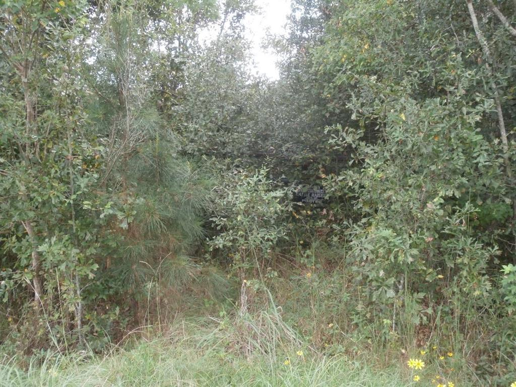 00 Fm 1004 W Property Photo - Kirbyville, TX real estate listing