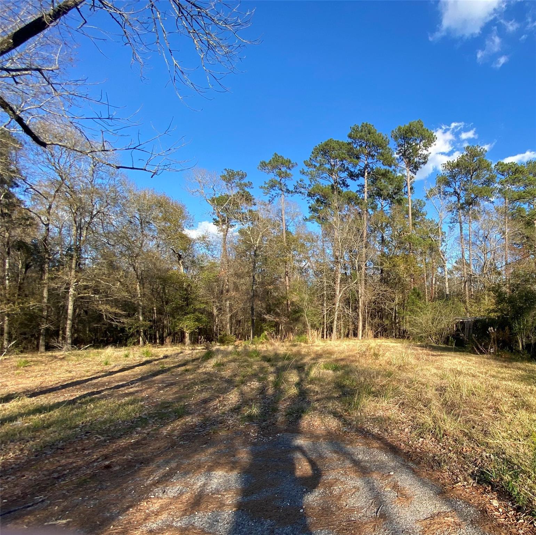 11150 Pine Cove Street Property Photo