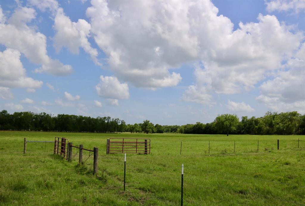 0025 County Road 185, Anderson, TX 77830 - Anderson, TX real estate listing