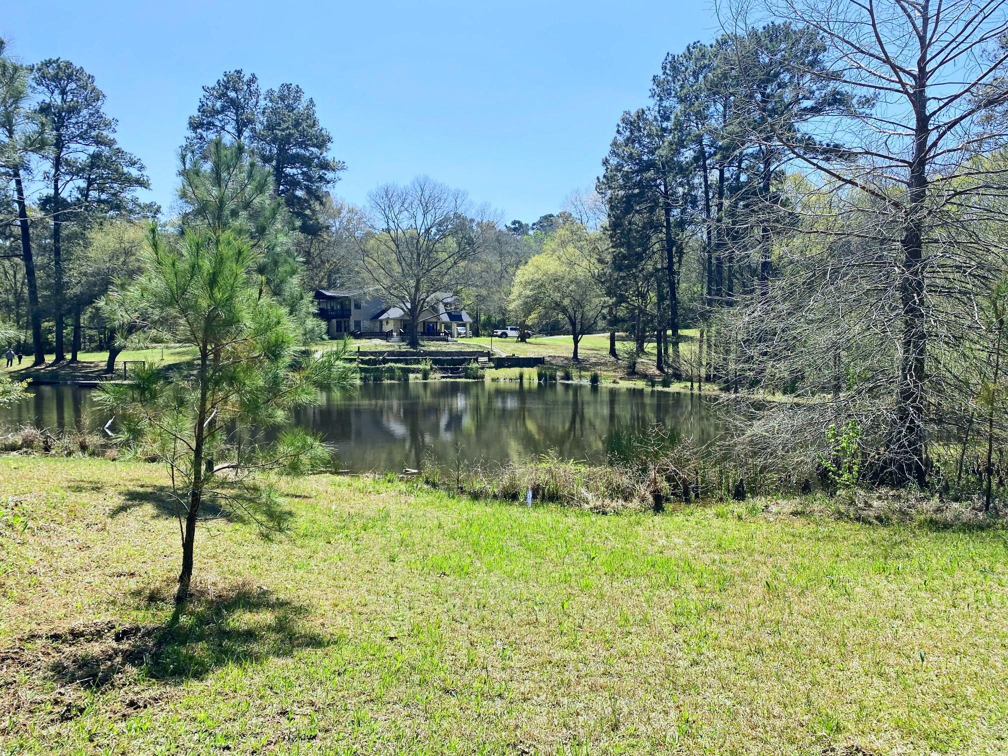 80 Nettie Phillips Road Property Photo - Coldspring, TX real estate listing