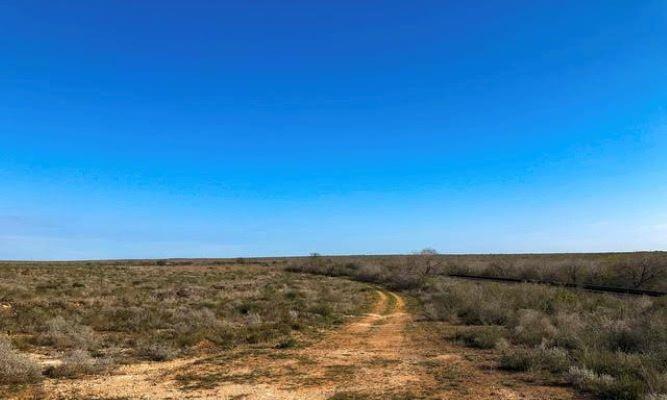 000 Highway 359 Property Photo - Benavides, TX real estate listing