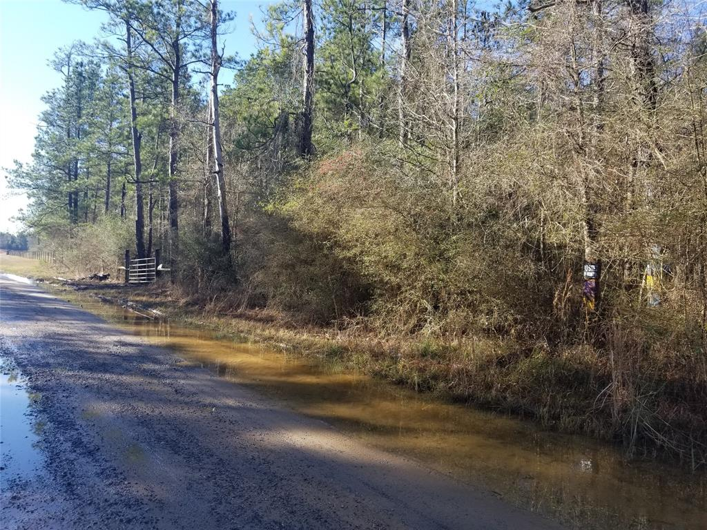 000 Co Road 701, Kirbyville, TX 75956 - Kirbyville, TX real estate listing