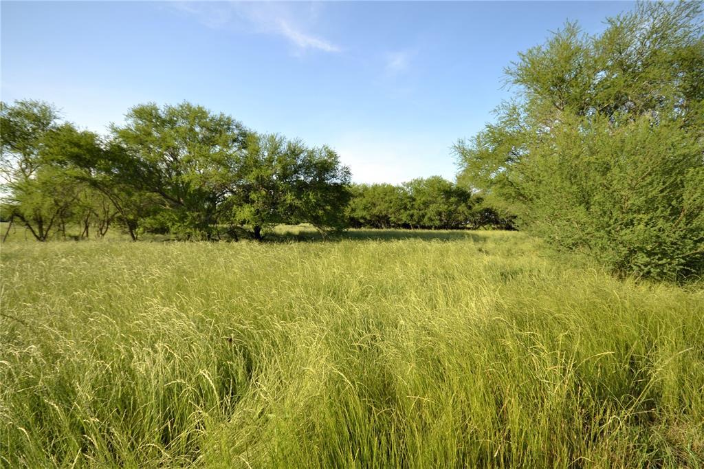 13083 Lot 14 E Old San Antonio Road Property Photo - Wheelock, TX real estate listing