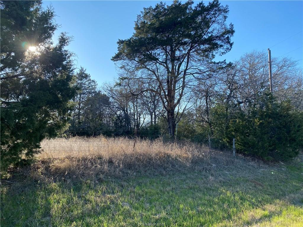 TBD Farm to Market Road 3403 Property Photo - Lincoln, TX real estate listing
