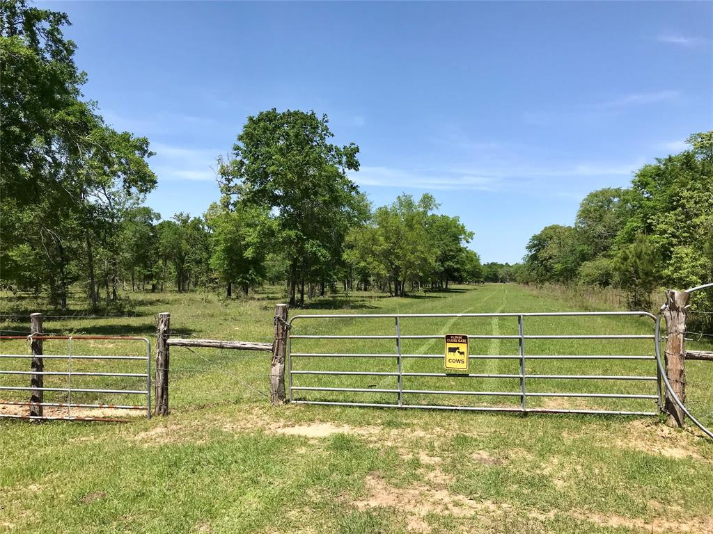 31150 Reids Prairie Road Property Photo - Waller, TX real estate listing