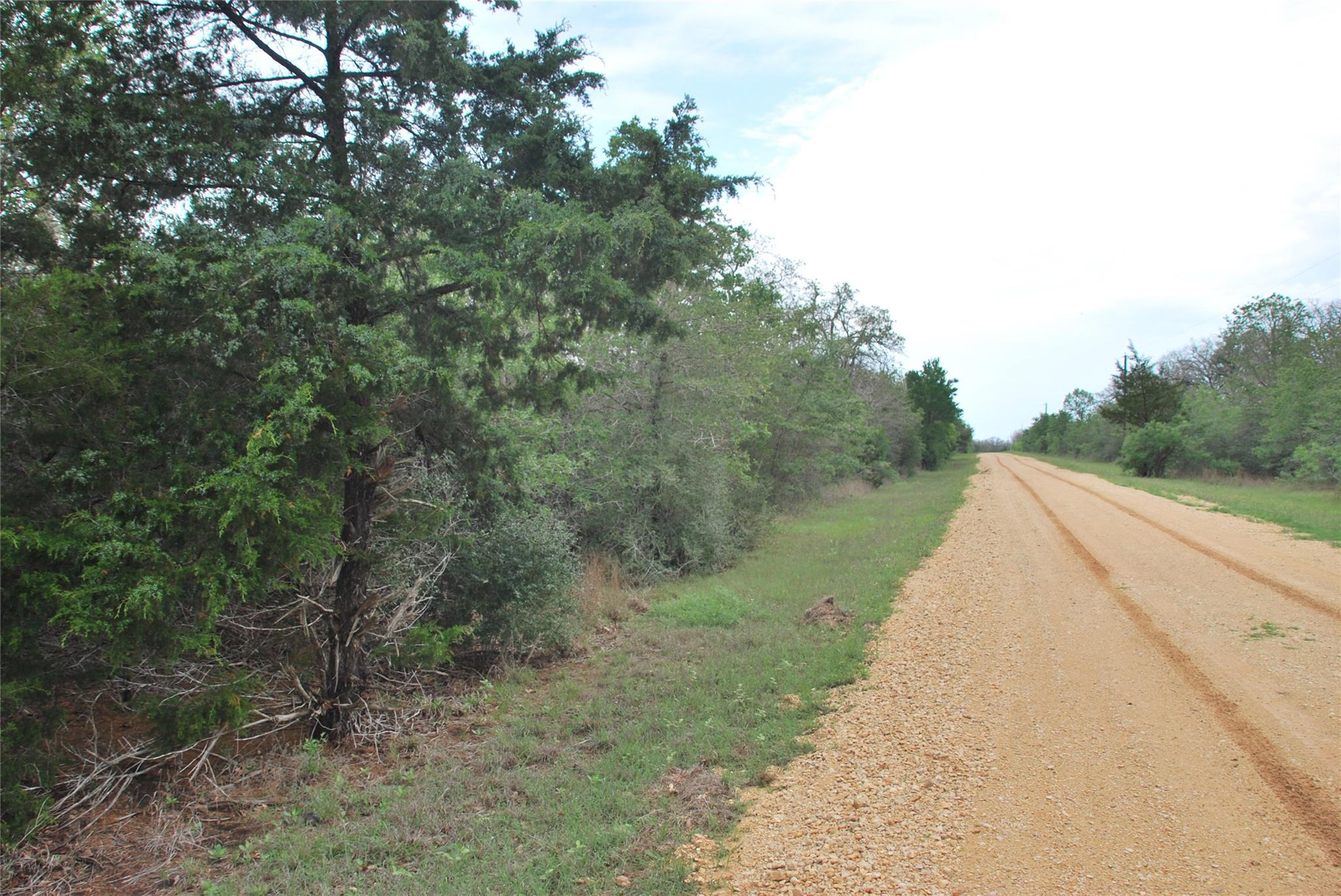 1839 Lariet Drive Property Photo - Cistern, TX real estate listing
