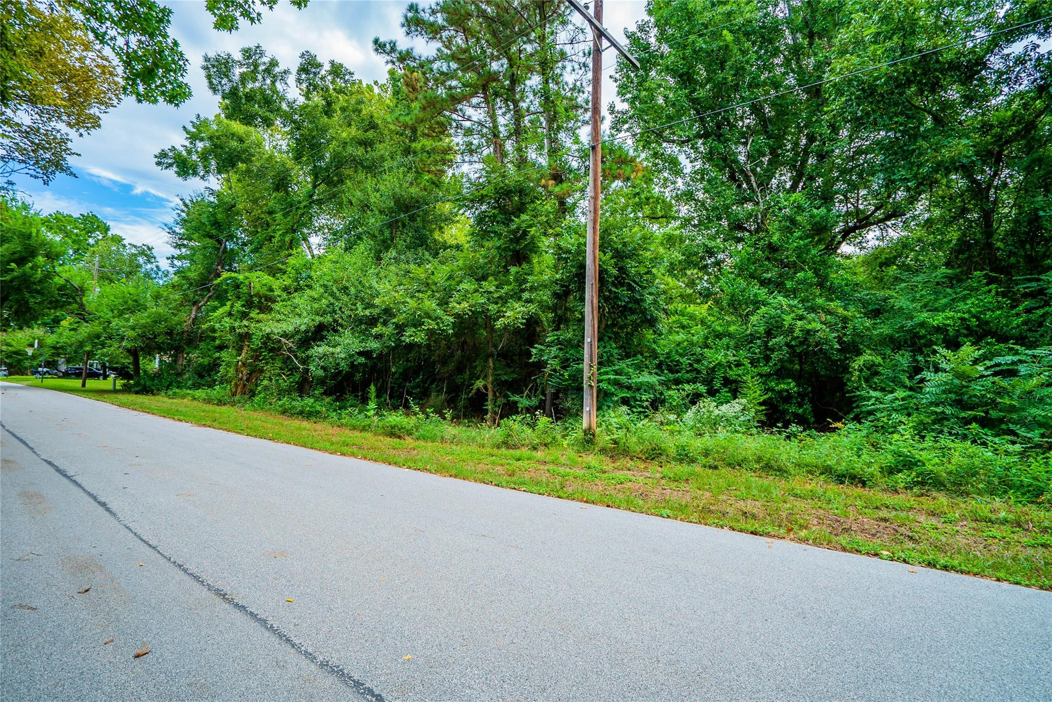 TBD Bearkat Blvd Property Photo - Huntsville, TX real estate listing