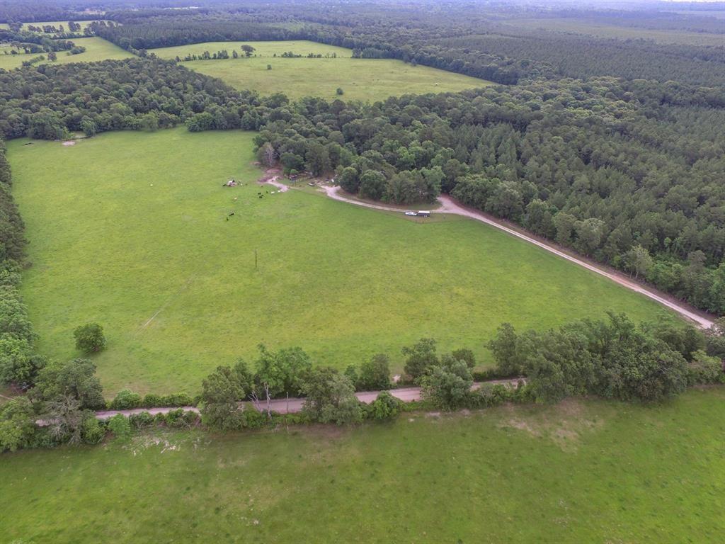 1533 Kickapoo Road Property Photo - Groveton, TX real estate listing