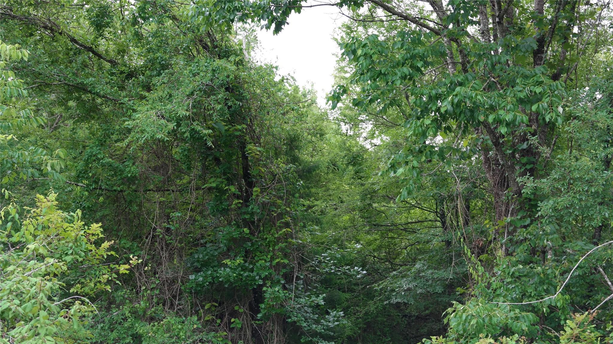 Tbd-0 N N I 45 Feeder Road N Property Photo