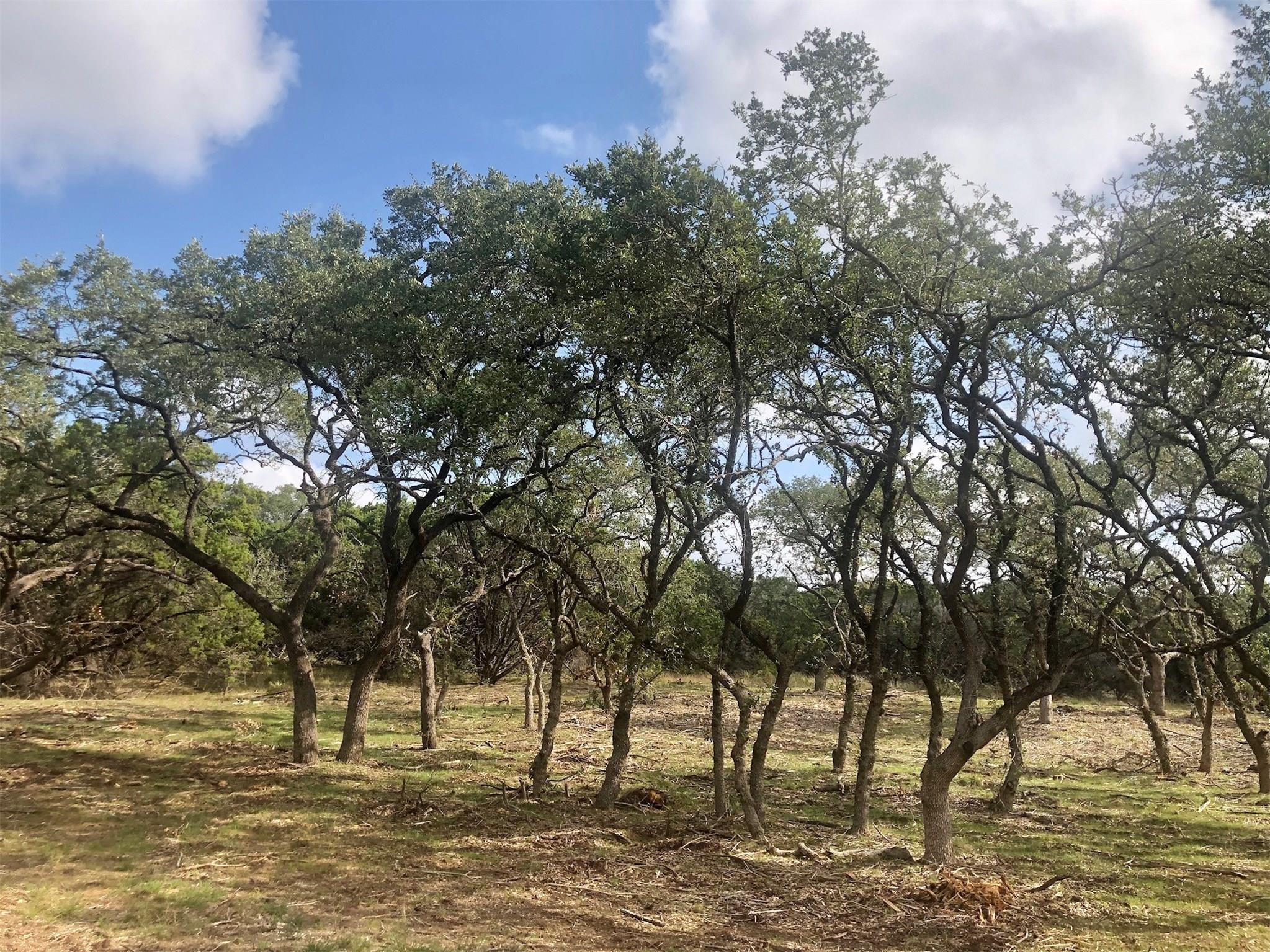 604 Burnett Ranch Road Property Photo - Wimberley, TX real estate listing