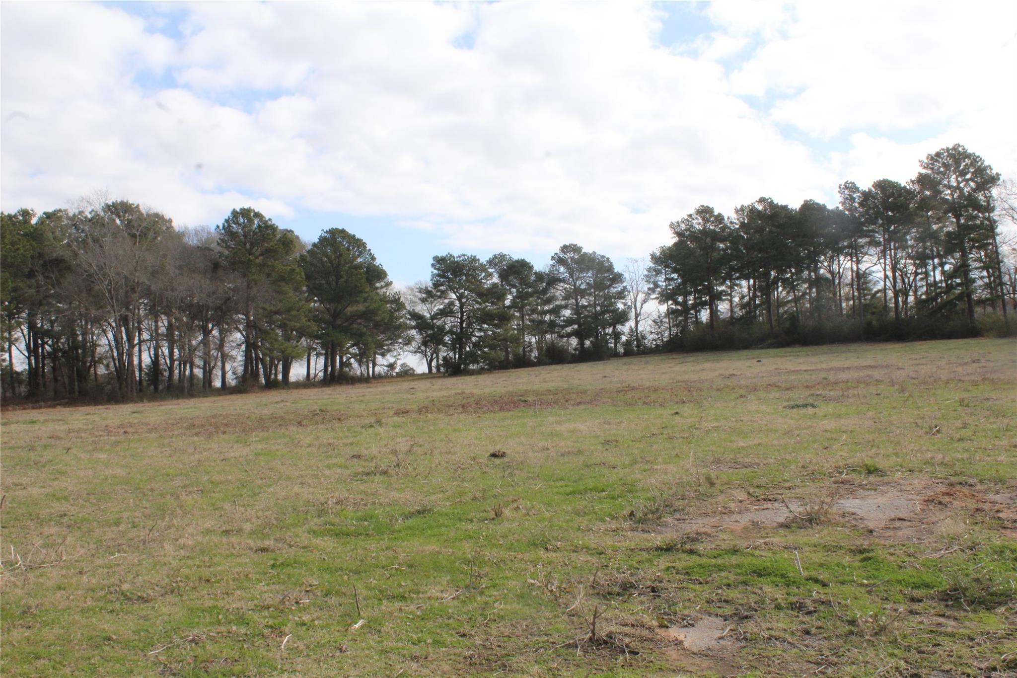 TBD NE Loop 304 Property Photo - Crockett, TX real estate listing