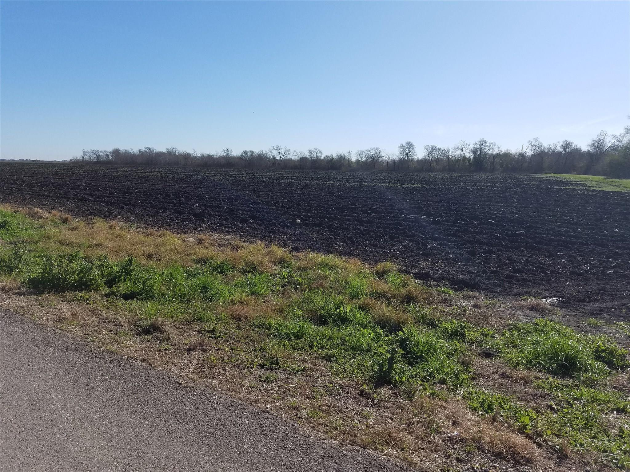 00 King Road Property Photo - Kendleton, TX real estate listing
