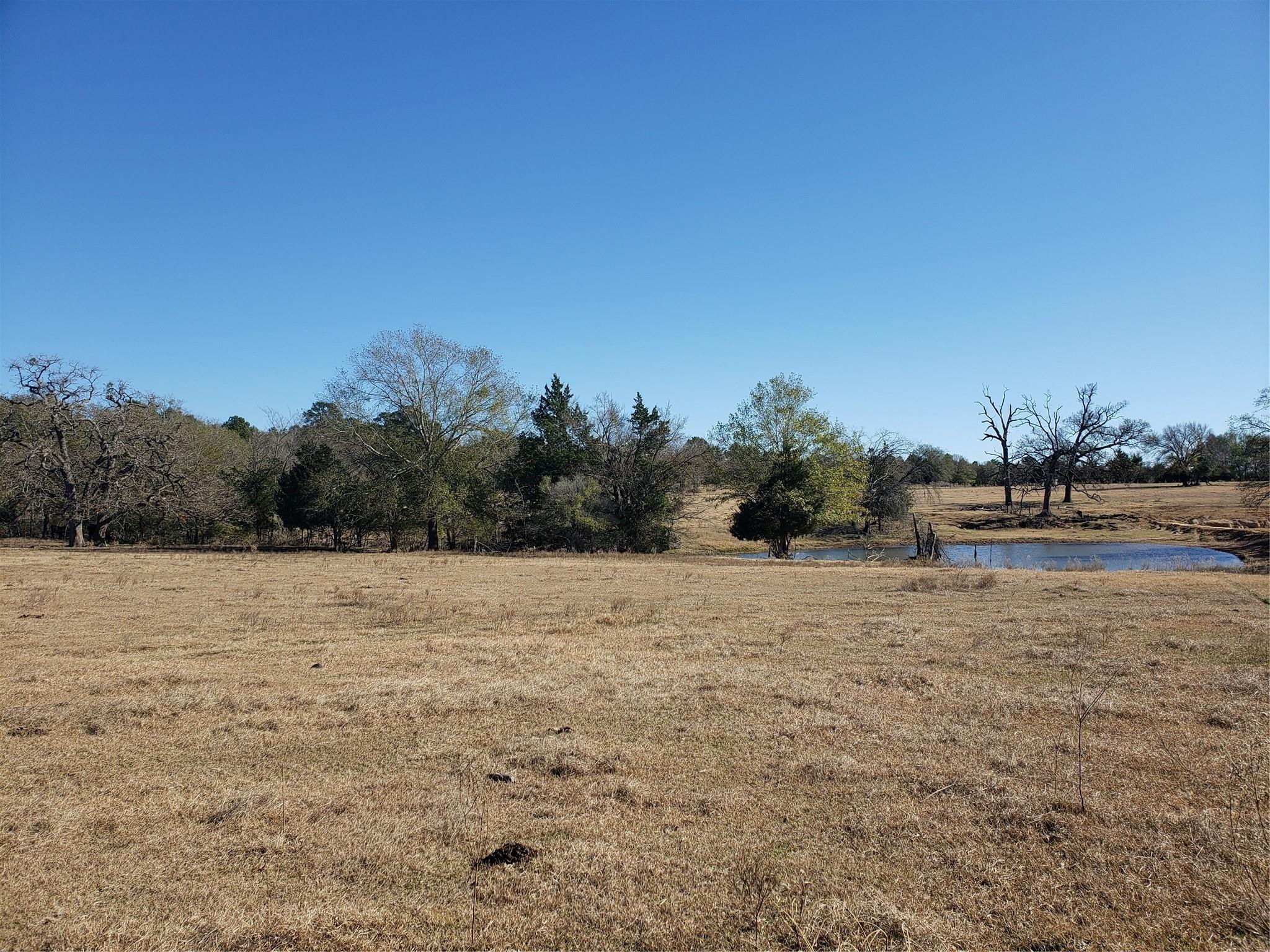 330 County Road 691 Property Photo - Teague, TX real estate listing