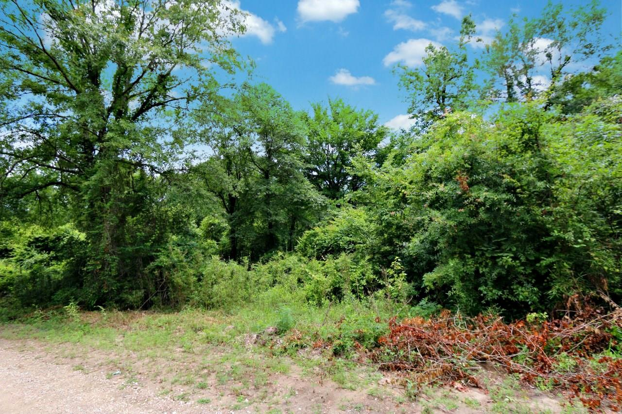 000 County Road 1052 Property Photo - Wiergate, TX real estate listing