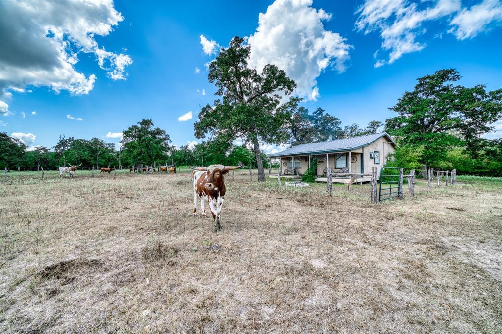 0000 TBD John Rice Drive Property Photo - Iola, TX real estate listing