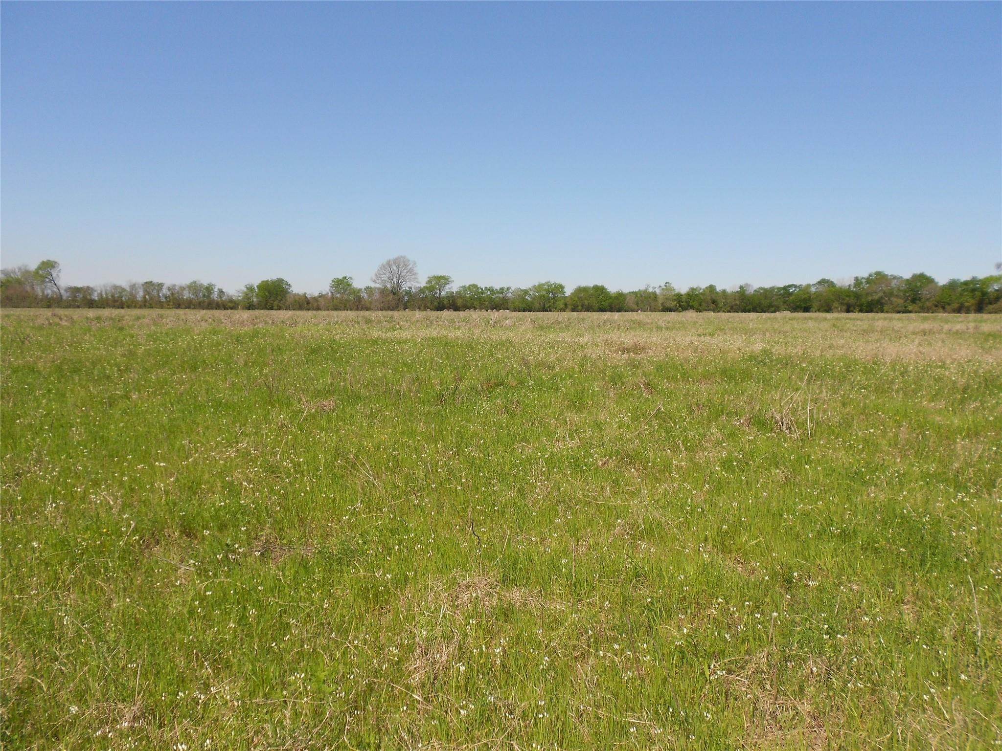 102.8 McQueen Rd Property Photo - Pennington, TX real estate listing