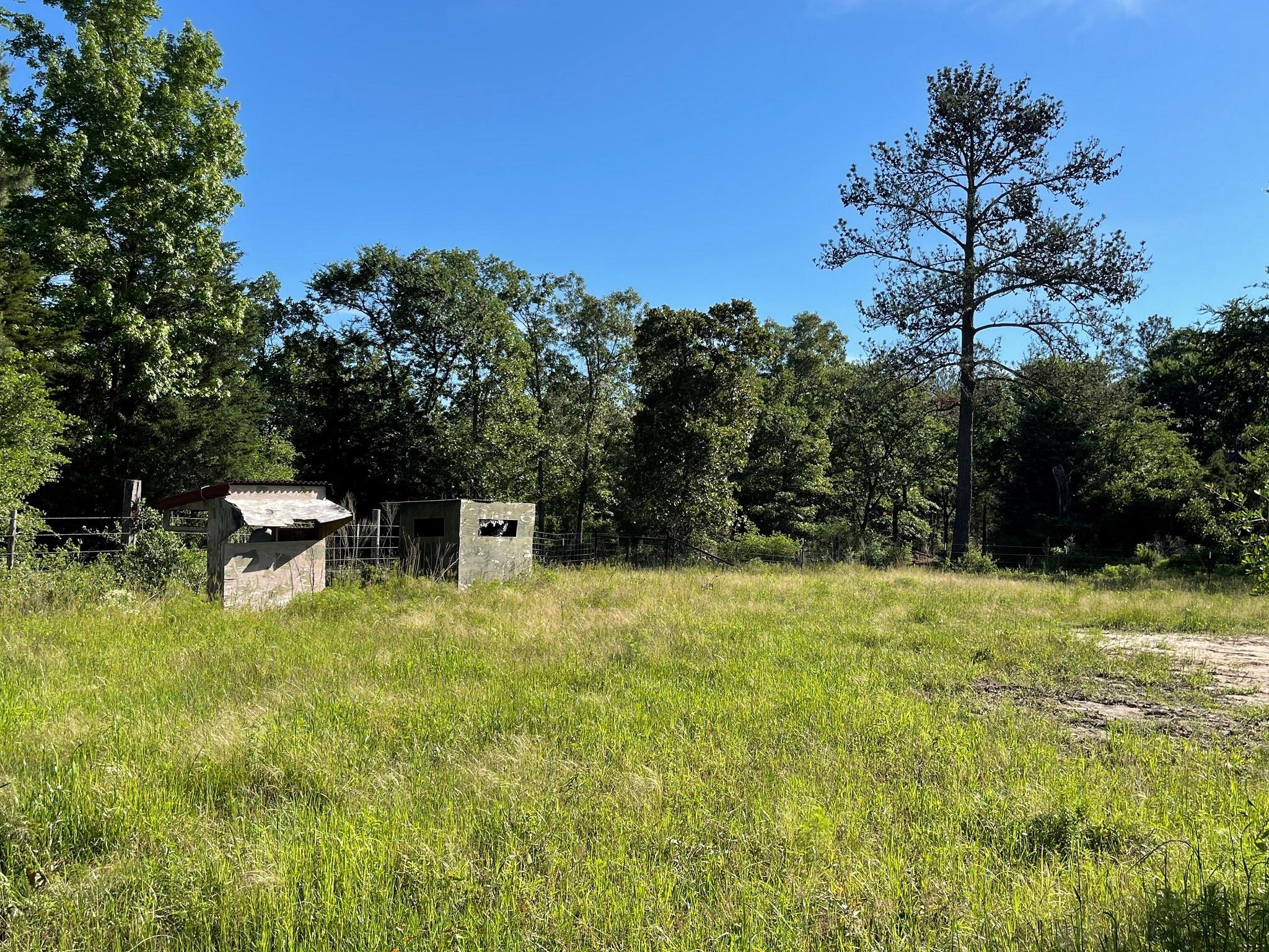 2515 County Road 115 Property Photo - Centerville, TX real estate listing
