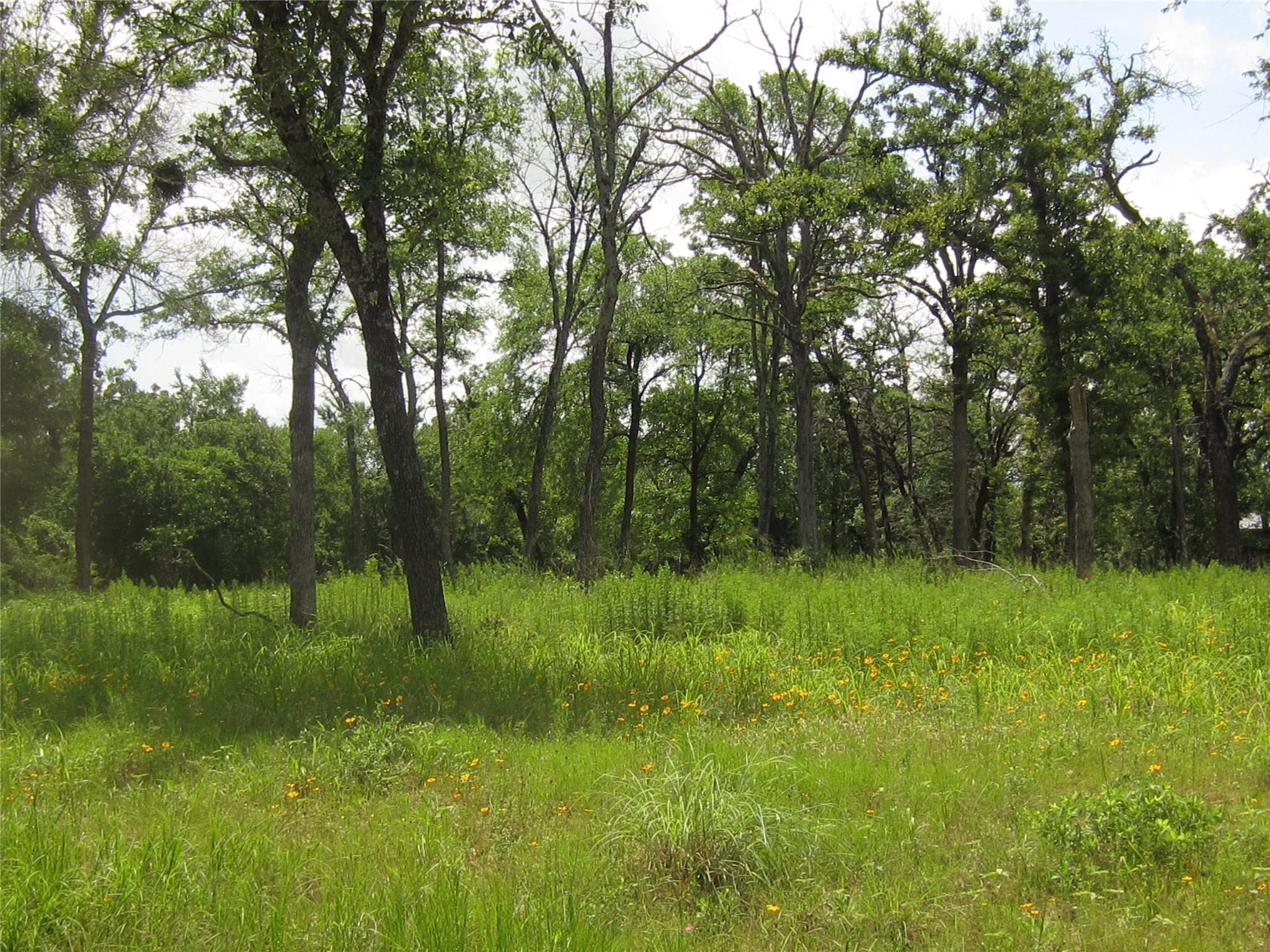 Lots 10-11 Cedar Lane Property Photo