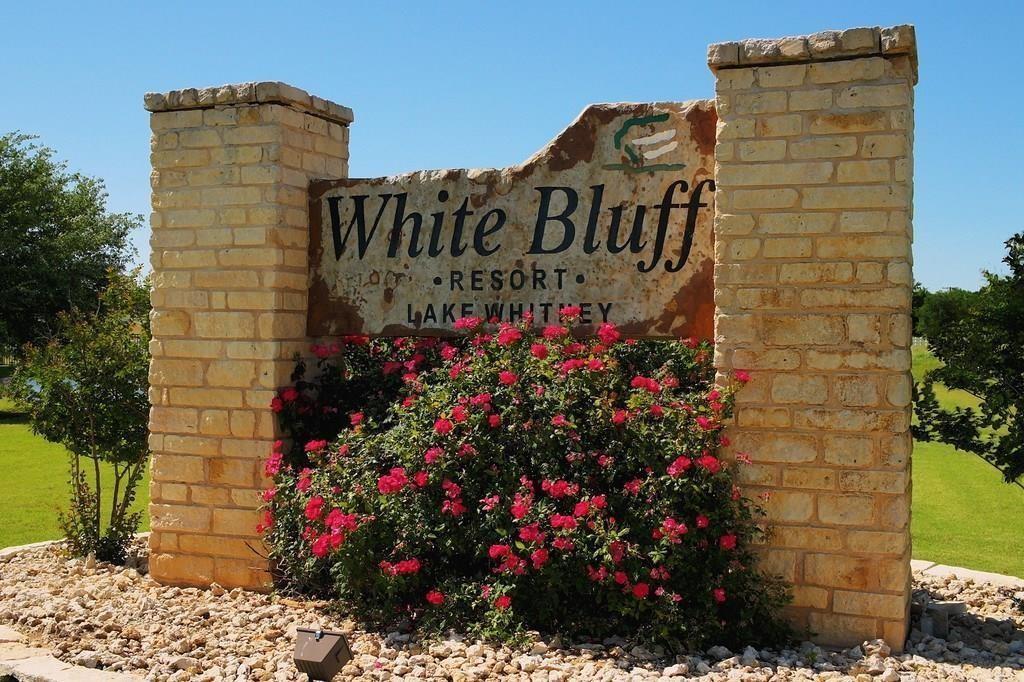 21086 Trailwood Drive Property Photo - Whitney, TX real estate listing