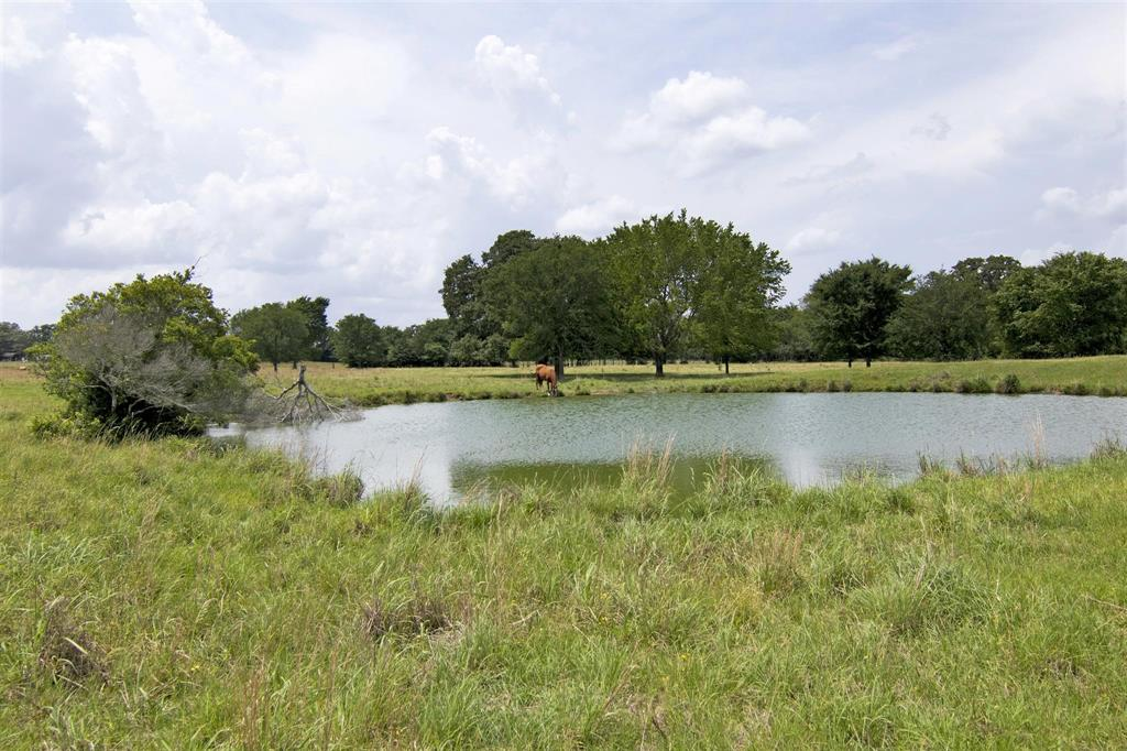9416 Highway 75 N Property Photo - Buffalo, TX real estate listing