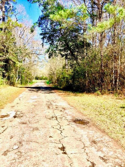 TBD Jackson Loop Property Photo - Saratoga, TX real estate listing