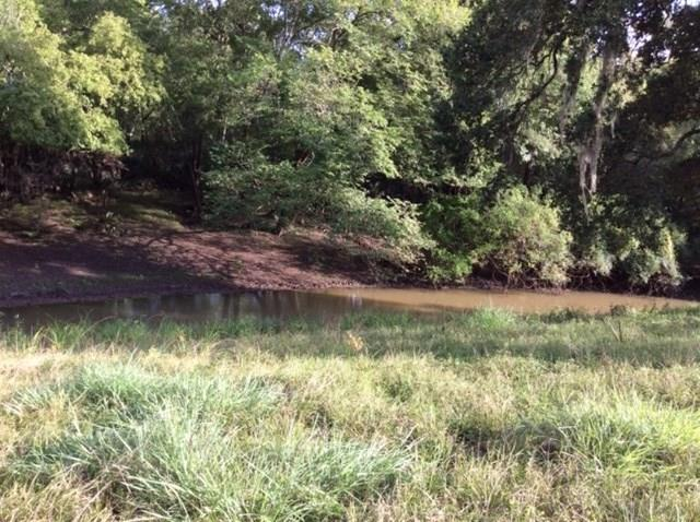 0 CR 150 Road Property Photo - Cedar Lane, TX real estate listing