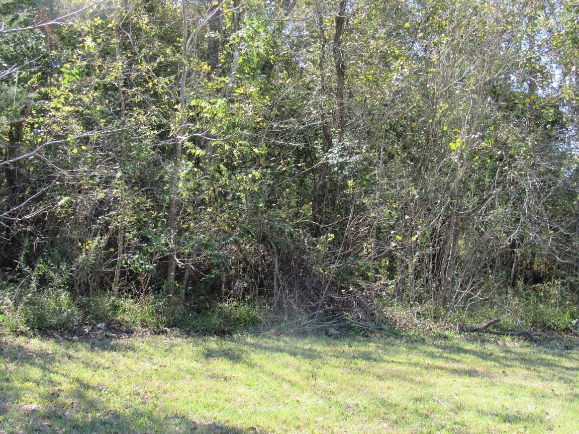 0 Helena Off Property Photo - Brookside, TX real estate listing