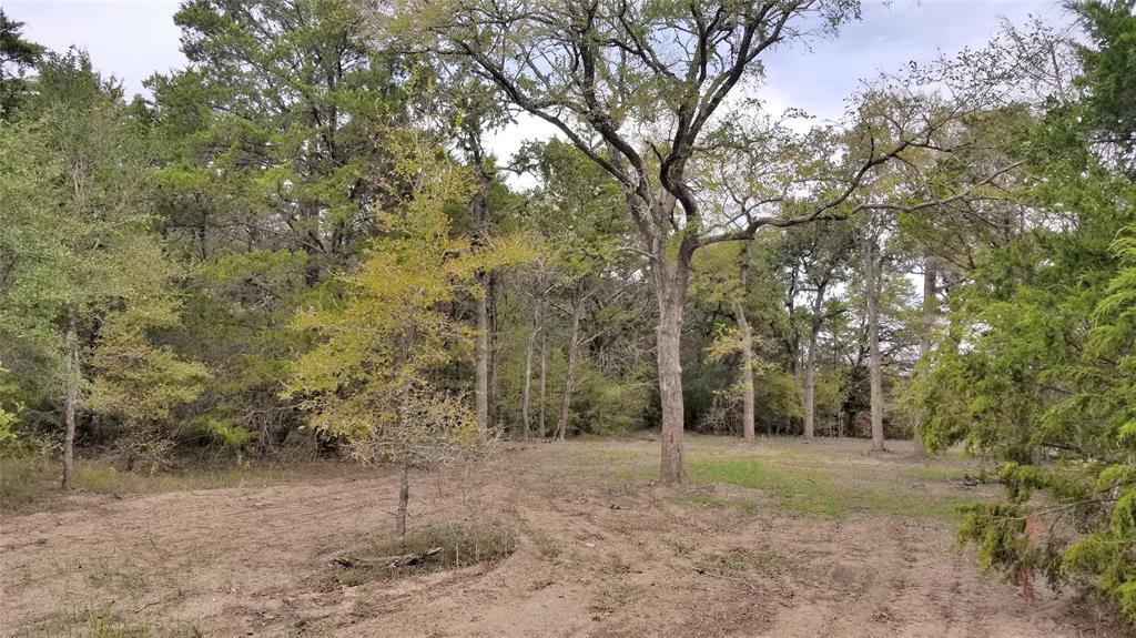 2490 Goehring Road, Ledbetter, TX 78946 - Ledbetter, TX real estate listing