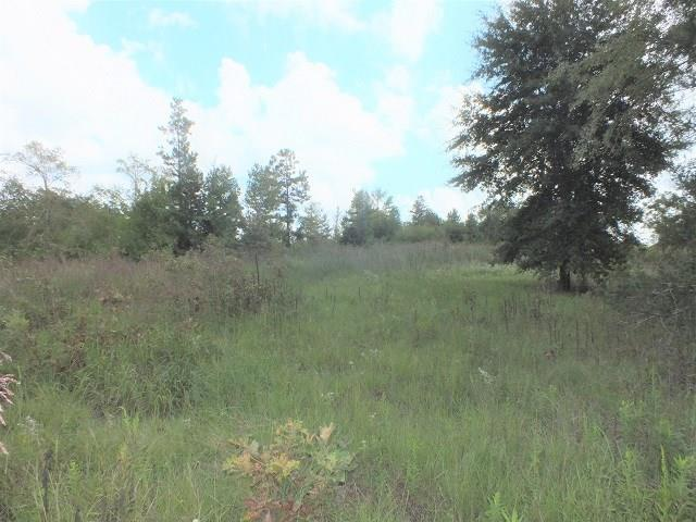 000 69 Highway S Property Photo - Alto, TX real estate listing