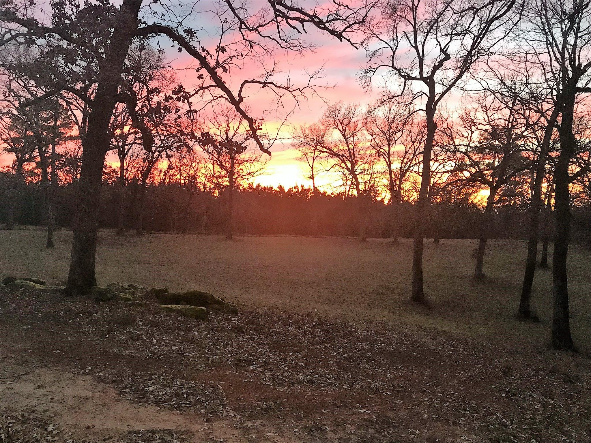 15394 S CR 236 Property Photo - Oakwood, TX real estate listing