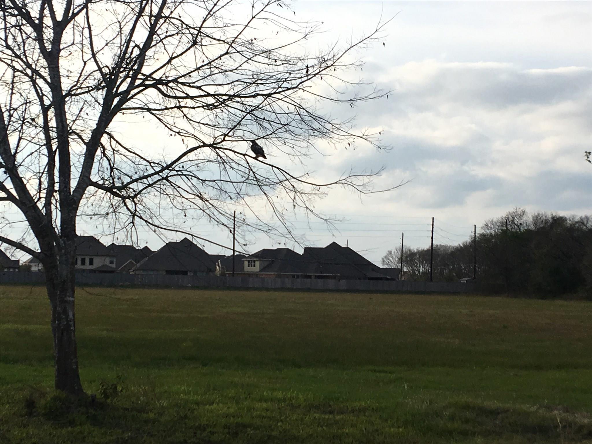 9618 Iowa Colony Boulevard Property Photo