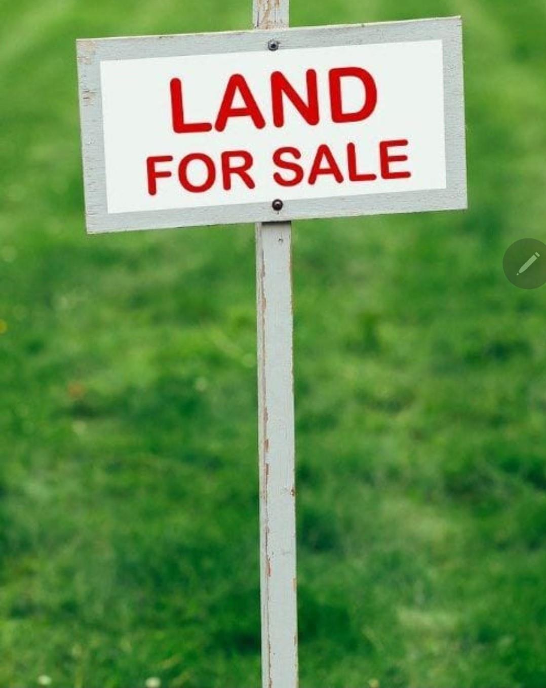 235 Lethia Street Property Photo