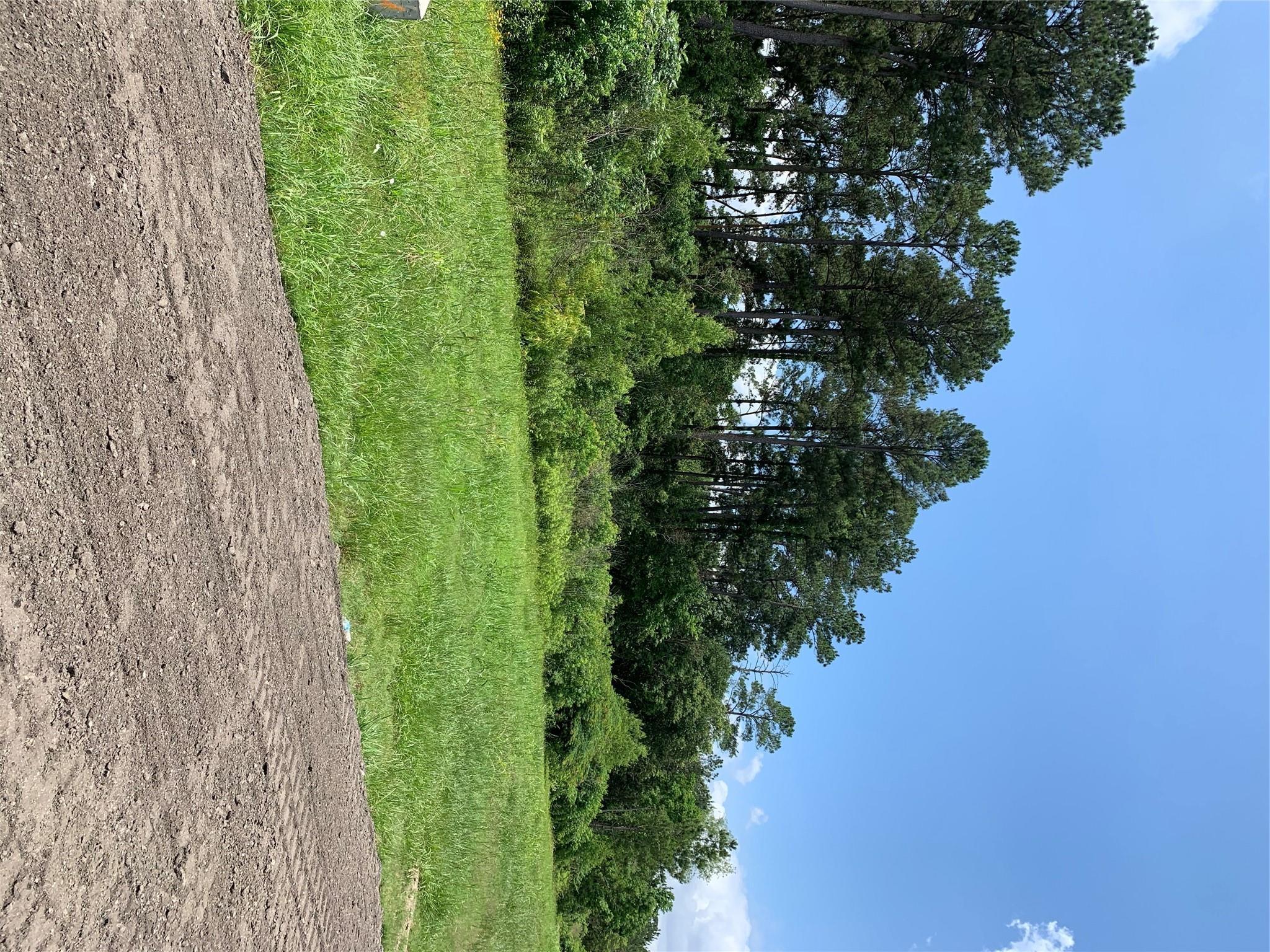 Tbd 13.7 Acres Fm 2100 Road Property Photo
