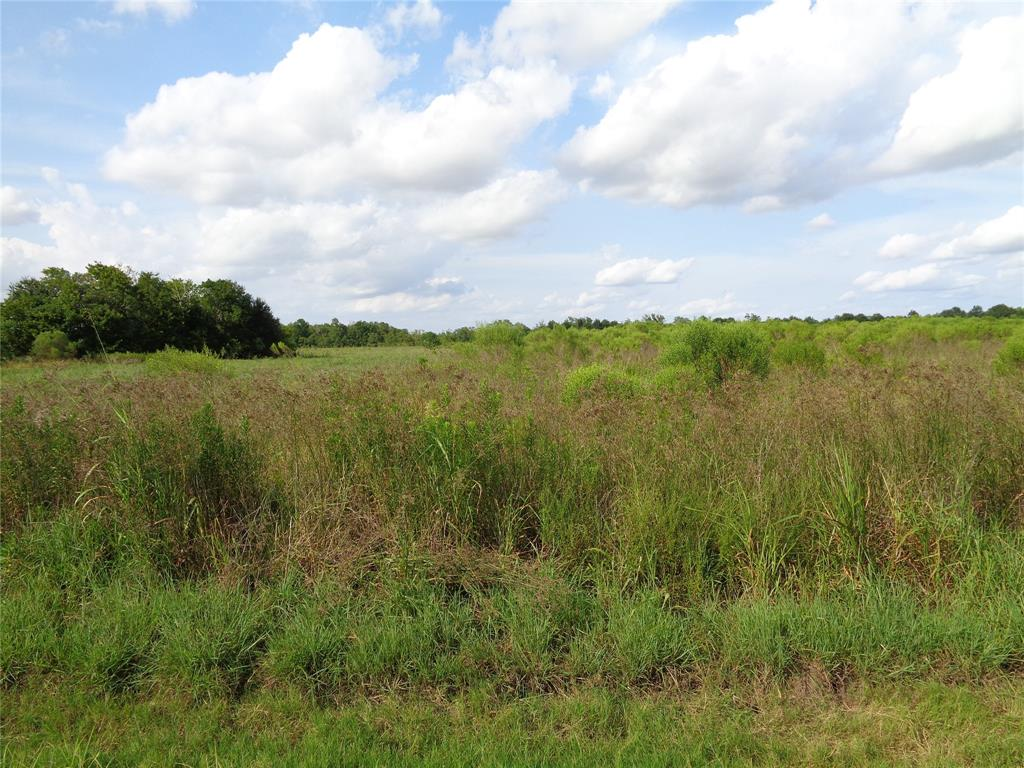 0 Hwy 36 Property Photo - Guy, TX real estate listing