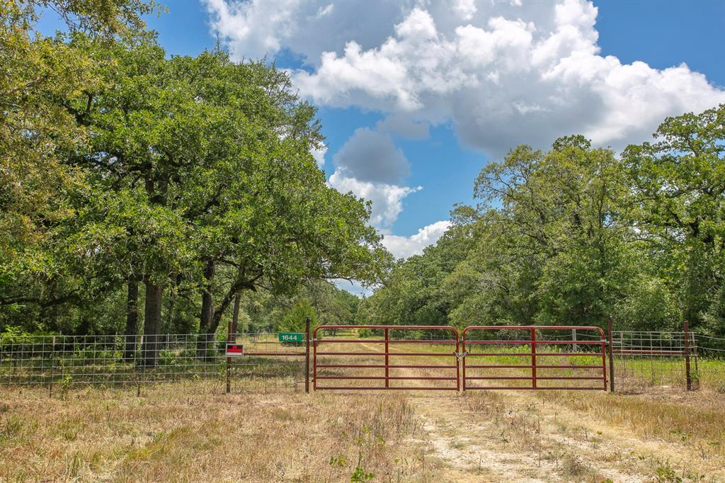 1644 County Road 314 Property Photo - Milano, TX real estate listing