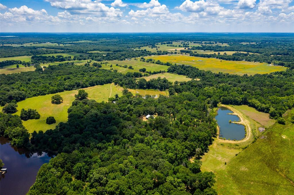 82 Acres ACR 2213 Property Photo - Palestine, TX real estate listing