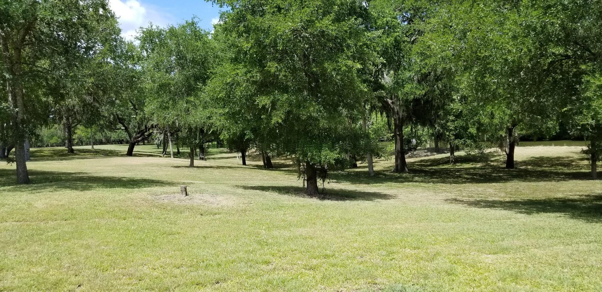 154 River Tree Drive Property Photo - Blessing, TX real estate listing