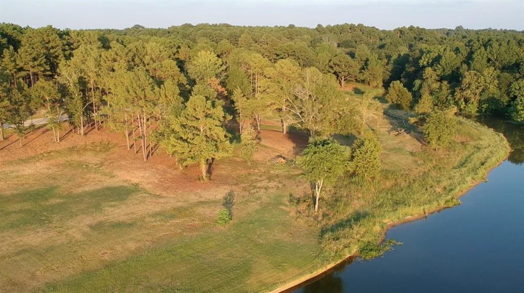 22240 Mallards Cove Ct Property Photo - Bullard, TX real estate listing