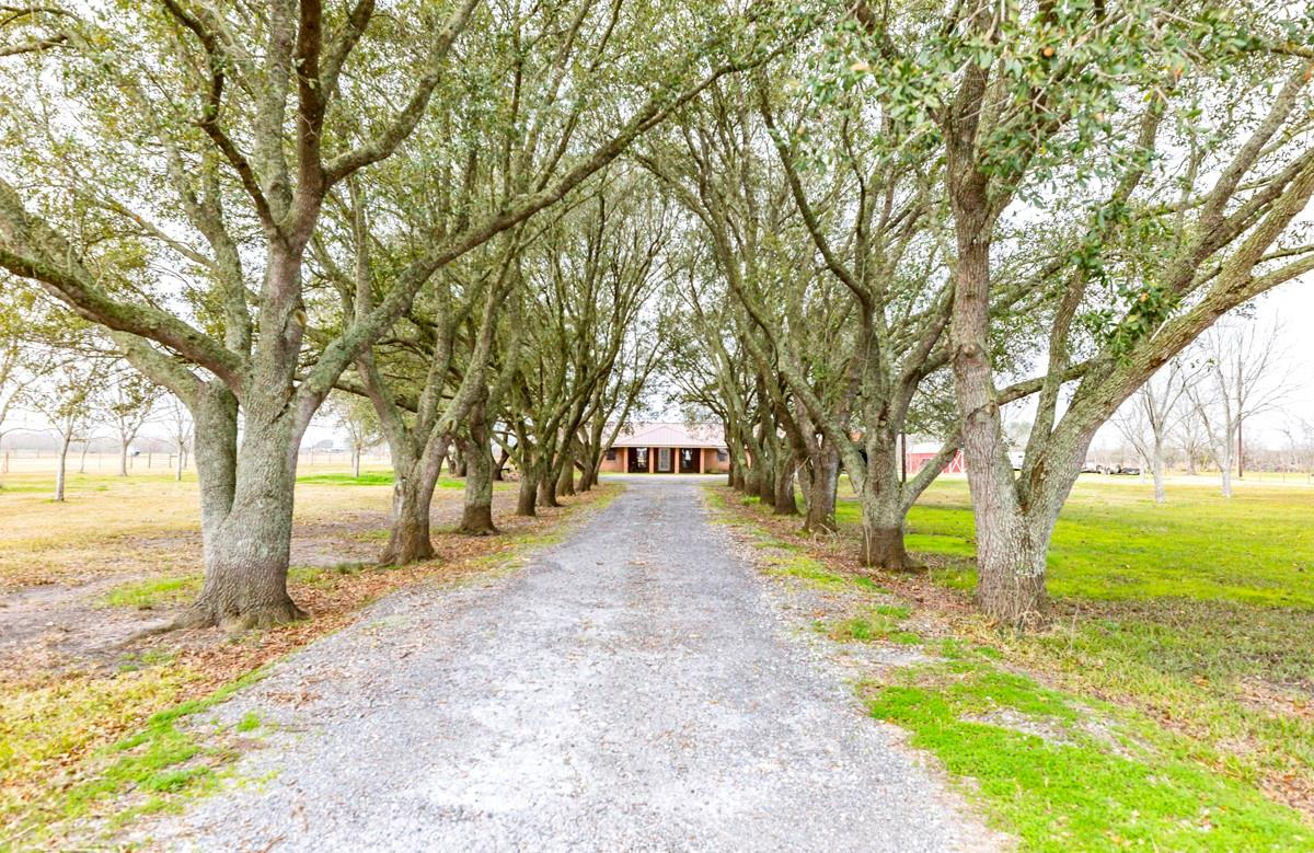16560 Wilber Road Property Photo - Hamshire, TX real estate listing