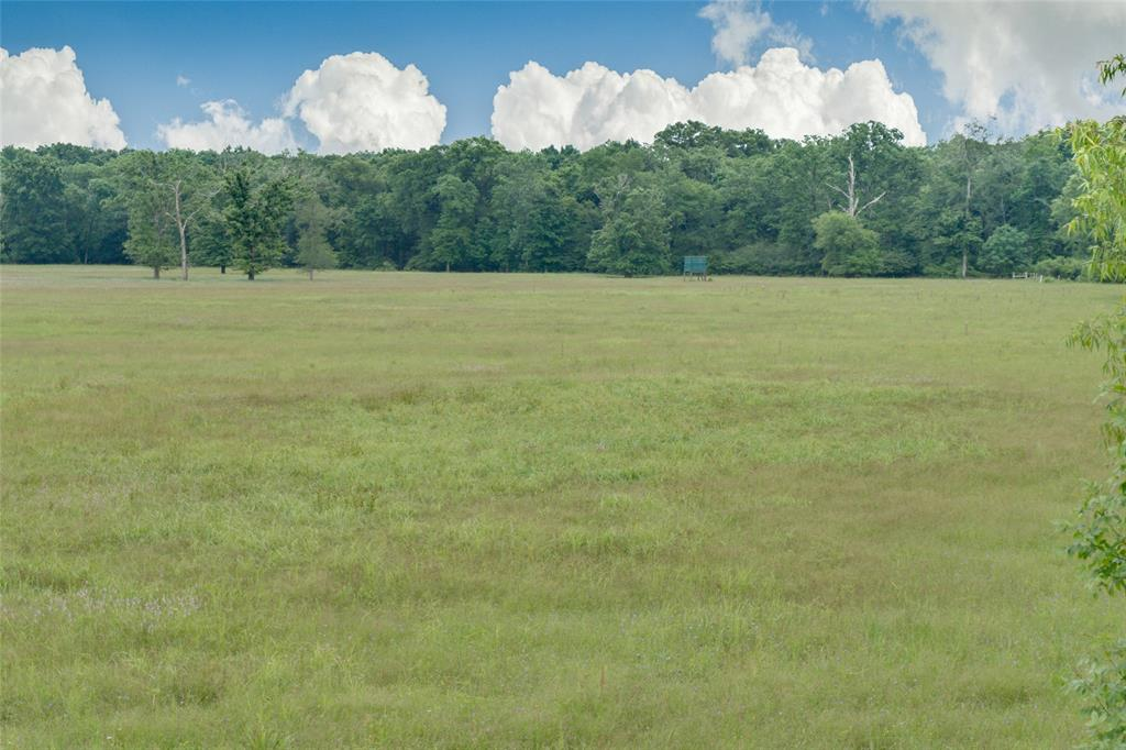 125,County Road 4323,, Tenaha, TX 75974 - Tenaha, TX real estate listing