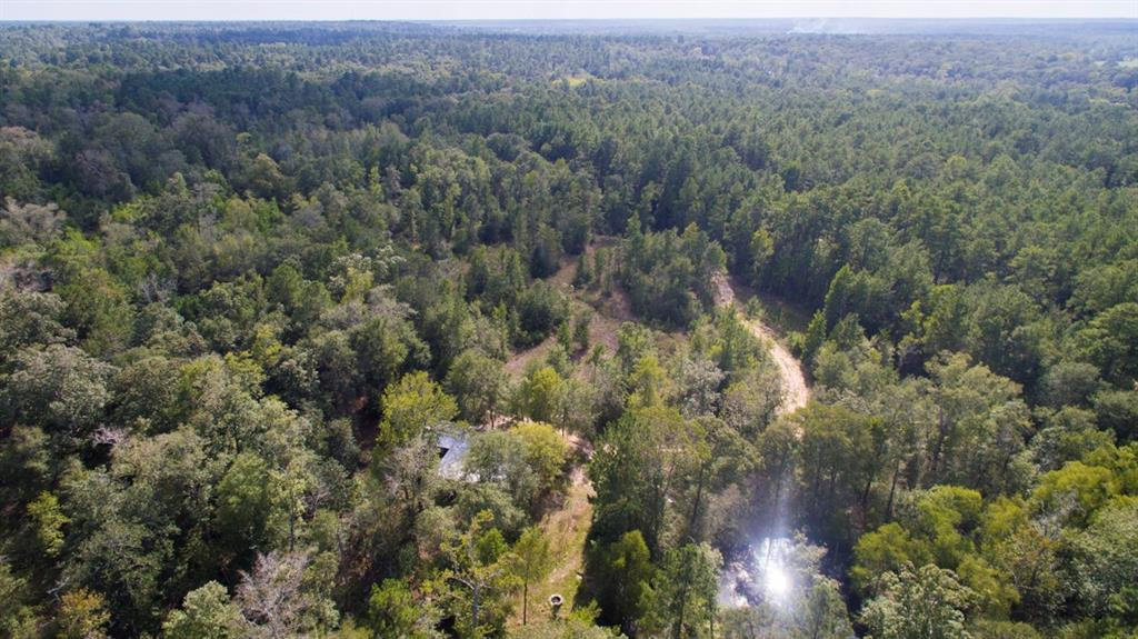 10371 Bilnoski Road Property Photo - Willis, TX real estate listing